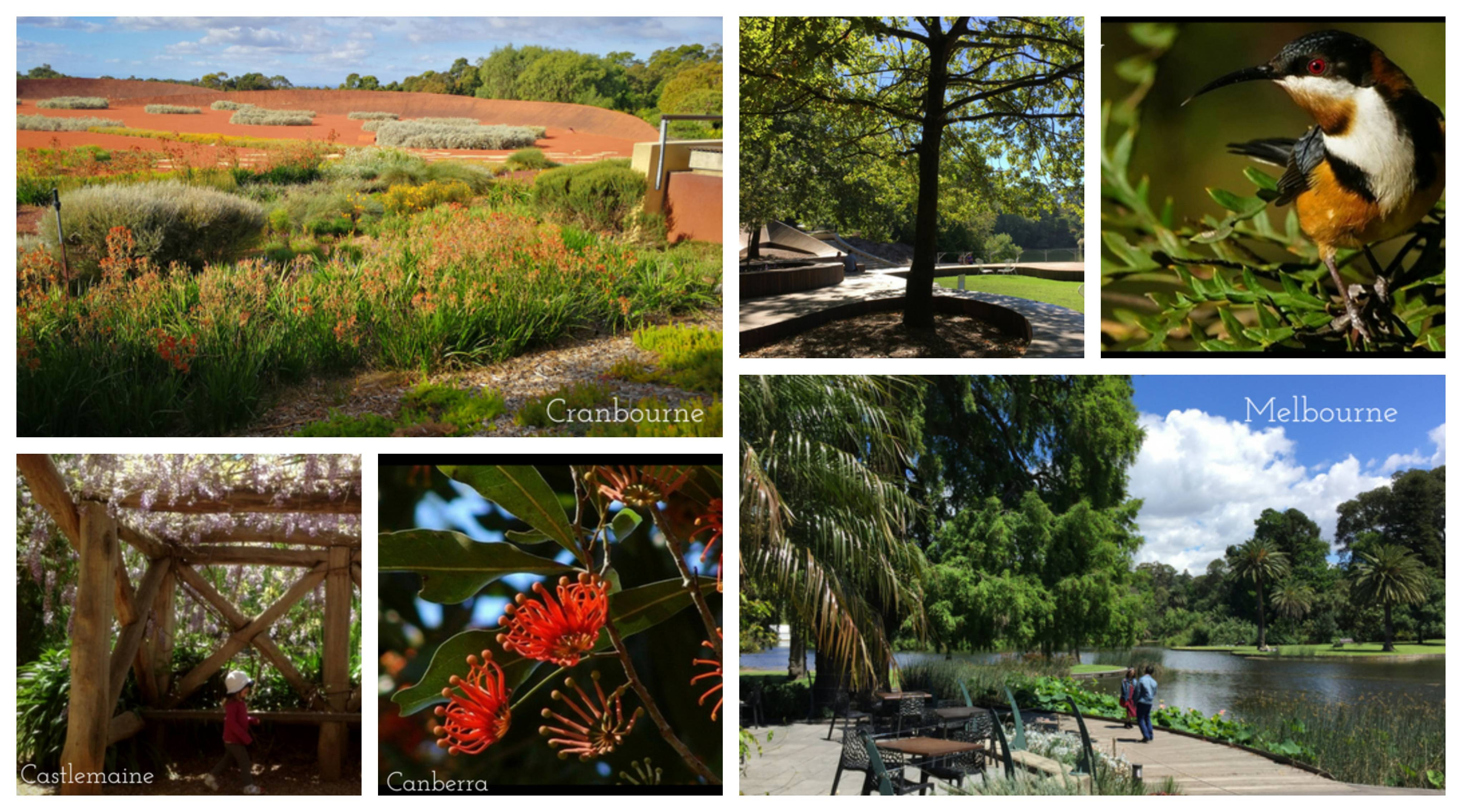 Best botanic garden walks in Melbourne,  Victoria and beyond