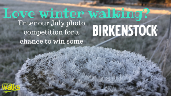 Winter Walking Photo Competition promo July 2018.