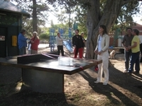- Port Phillip - ping pong in the park