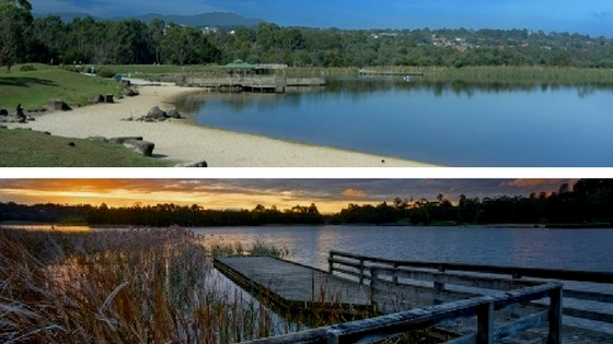 Lilydale Lake walk collage.